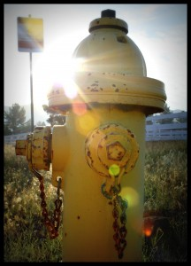 Hydrant with Flare